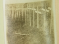 Graves in France II, Earl L. Stahl Collection, Courtesy of Craig Bowers.